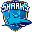 Match Antibes Sharks - Rouen