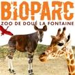 BIOPARC DE DOUÉ LA FONTAINE 2016 - 1 entrée