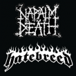 PASS NAPALM DEATH / HATEBREED
