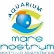 Mare Nostrum - Entrée 1 jour 2014