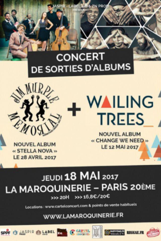 Wailing Trees + Jim Murple Memorial @ La Maroquinerie - PARIS