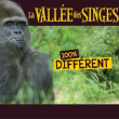 LA VALLEE DES SINGES 2016