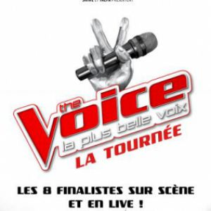 Spectacle THE VOICE, LA TOURNEE
