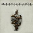 WHITECHAPEL + Guest