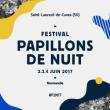 Festival Papillons de Nuit - Billet 1 Jour Dimanche