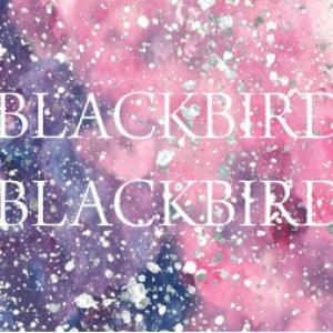 Concert BLACKBIRD BLACKBIRD