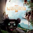 Festival Madagascar, l'Ile des Lémuriens