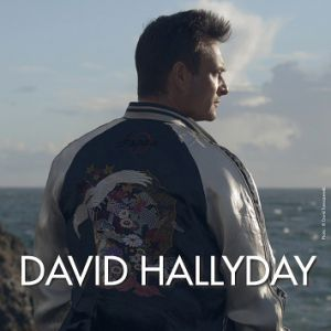 Concert DAVID HALLYDAY