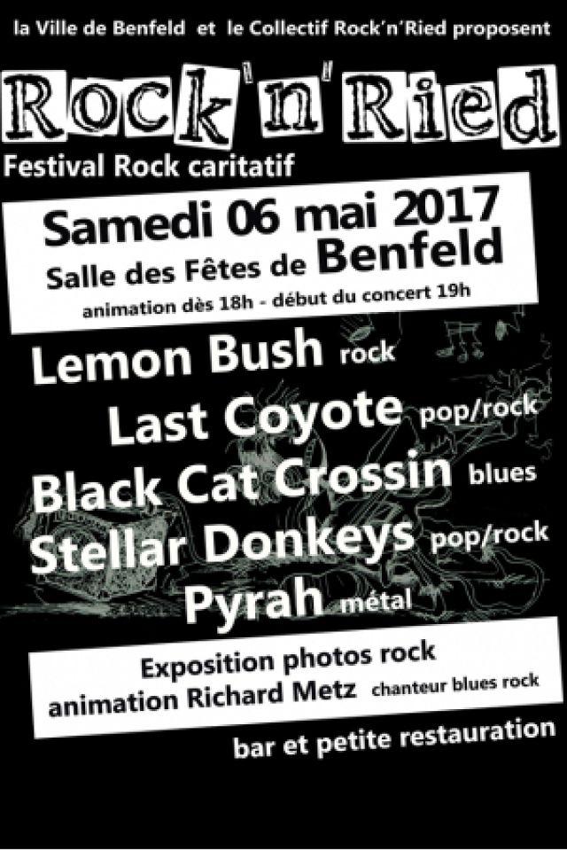 Festival Rock'n'Ried @ Salle des fêtes - BENFELD