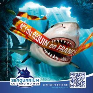SEAQUARIUM GRAU DU ROI     @ Le Seaquarium - LE GRAU DU ROI