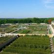 Visite guidée : Le parc de Versailles et le Potager du Roi