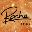 Soir�e ROCHE MUSIQUE WINTER TOUR : FKJ + DARIUS + KARTELL...