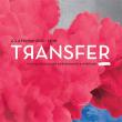 FESTIVAL TRANSFER - 3 FEVRIER - TRANSBORDEUR - DAY 2 >19h-5h