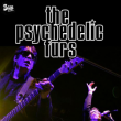 Concert THE PSYCHEDELIC FURS