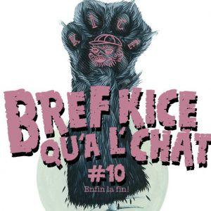 Concert BREF KICE QU'A L'CHAT#10:TAGADA JONES,BURNING HEADS,THE DECLINE!