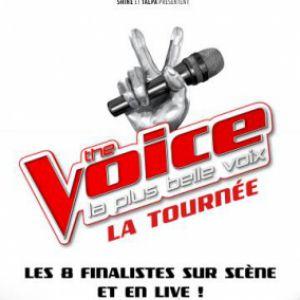 Spectacle THE VOICE, LA TOURNEE