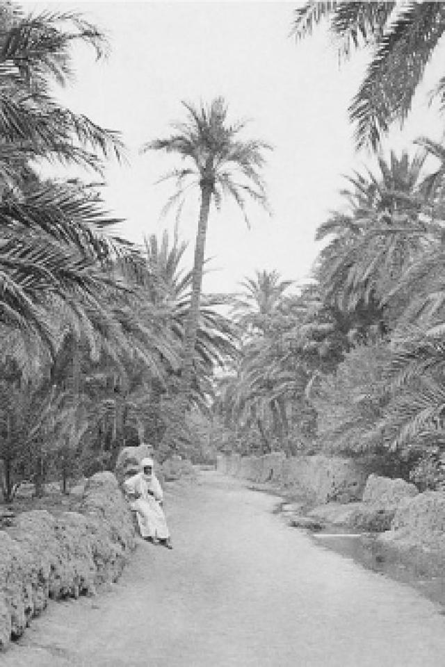 Biskra, sortilèges d'une oasis @ Institut du Monde Arabe - PARIS