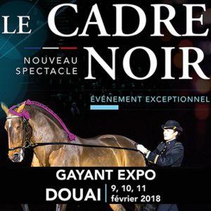 LE CADRE NOIR DE SAUMUR @ Gayant Expo - Douai