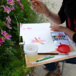 Atelier adulte - aquarelle
