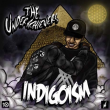 Concert THE UNDERACHIEVERS (Brainfeeder)