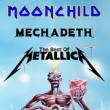 Soirée Tribute Iron Maiden Metallica Megadeth