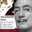 Expo VISITE DE L'ESPACE DALI - COLLECTION PERMANENTE